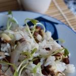 Riz sauté aux oignons et pousses de haricots adzukis