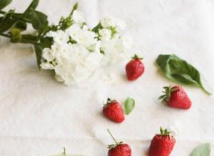 Sorbet fraise, basilic et huile d